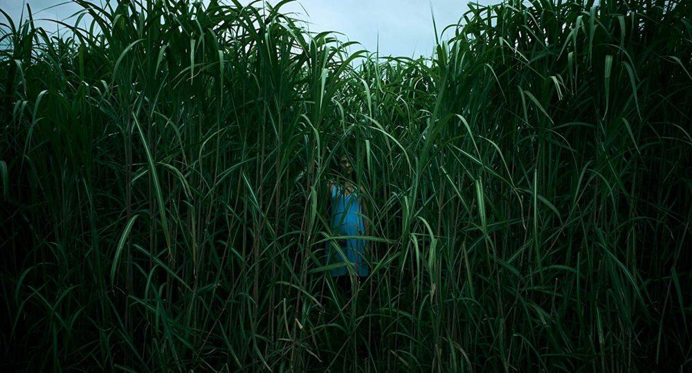 Netflix In the Tall Grass Trailer